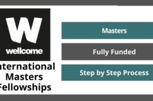Wellcome International Fellowship